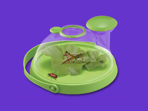 Bug Jug Live Insect Viewer by Uncle Milton