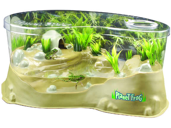 Planet Frog Live Frog Habitat by Uncle Milton